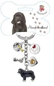 Do Newfoundlands Shed Hair by 15 Best Newfoundland Images On Pinterest Newfoundland Dogs