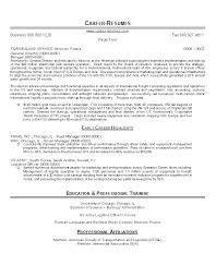 Resume Sample 22