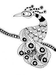 Display Image Coloring Extaordinary Bird
