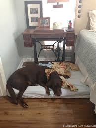 Restoration Hardware Dog Bed by Fisherman U0027s Wife Furniture Master Bedroom Reveal