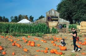 Heather Hill Pumpkin Patch by Family Fun In Sacramento Page 13