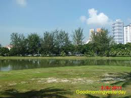 100 Casuarinas Good Morning Yesterday 5 Places Where You Find Casuarina
