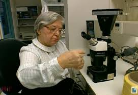 Innovative Lives Stephanie Kwolek And KevlarR The Wonder Fiber