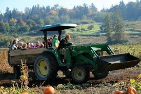 Southern Ohio Pumpkin Patches by 11 Smashing Good Pumpkin Patches Mnn Mother Nature Network