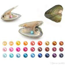 100 Where Is Dhgate Located 2019 Round Oyster Pearl 6 8mm 2018 New 27 Mix Color Big Fresh Water