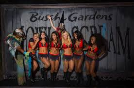 Halloween Busch Gardens by Photos Tampa Bay Buccaneers Cheerleaders Face Their Fears At