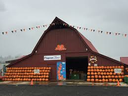 Live Oak Pumpkin Patch 2017 by Celebrate Fall The Grays Harbor Way With Pumpkin Patches And More