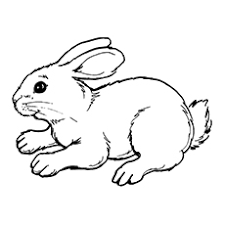 Printable Coloring Page Of Cute Rabbit