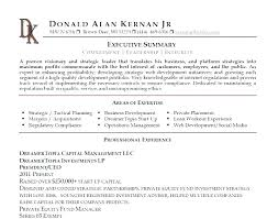 Resume Synopsis Example Sample Executive Summary For Web Developer Picture Statement Freshers