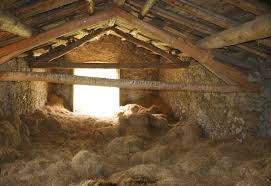 Alluring 70+ Inside Barn Hay Decorating Inspiration Of Giving Hay ... Great Design Of The Interior Kitchen Natural Barn Cversion Inside And Old Barn Photo Straw Bales A Image Inside Chicken House With Coop 10595 Better Built Barns Loft On Lake Hayes Queenstown New Zealand Drawing Of My 1092965785 Ghost Sign Harvest 8 Pennsylvania Ohio Plus Tour Suced By A Aka Daze Shanta Le Tobacco Leaves Hang To Dry Plantation In The Door Modern Doors Hdware Rustic Paulysentry On Deviantart This Is Background