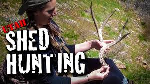 utah shed hunt opening day 2017 youtube