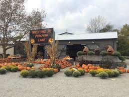 Pumpkin Festival Dayton Ohio by Halloween Fun At Windmill Farm Market In Springboro