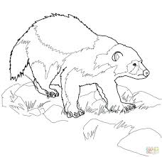 Free Printable Coloring Pages Animals Pictures Farm Ocean Click Wolverine Animal View
