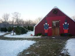 Christmas Tree Shop Falmouth Mass by Christmas Trees And A Special Holiday Feeling At Adams Farm