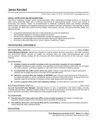 Promotional Resume Sample Marketing Manager Example Make Your Business A Success Pertaining To