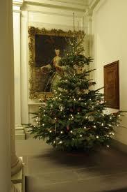 Fraser Fir Christmas Trees Kent by 55 Best Christmas Images On Pinterest Merry Christmas Christmas