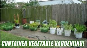 How To Start A Container Vegetable Garden From Scratch - YouTube 38 Homes That Turned Their Front Lawns Into Beautiful Perfect Drummondvilles Yard Vegetable Garden Youtube Involve Wooden Frames Gardening In A Small Backyard Bufco Organic Vegetable Gardening Services Toronto Who We Are S Front Yard Garden Trends 17 Best Images About Backyard Landscape Design Ideas On Pinterest Exprimartdesigncom How To Plant As Decision Of Great Moment Resolve40com 25 Gardens Ideas On