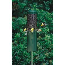 Squirrel Feeder Adirondack Chair shop bird feeders at lowes com