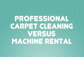 about professional carpet cleaners in orlando