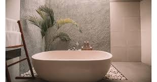 top 5 die besten pflanzen fürs badezimmer chip