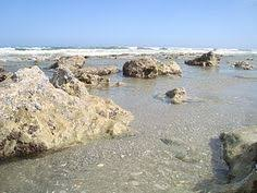 bathtub reef beach in stuart has a shallow reef that is perfect