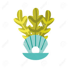 100 Sea Shell Design Isolated Icon Vector Illustration Royalty Free