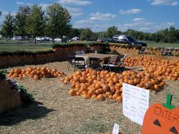 Pumpkin Patch With Petting Zoo by Glendale Heights Oktoberfest The Accidental Wallflower