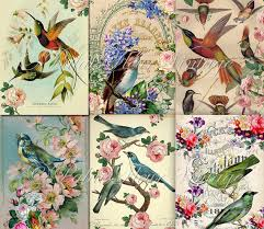 A4 Antique Bird Wallpaper Paper 6 PACK Instant Download Vintage Floral Victorian Shabby Chic Craft Wrapping Scrap Digital PalaisFleurVintage From