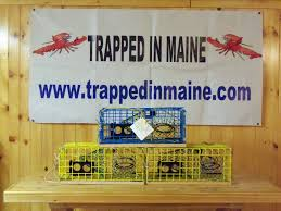 Decorative Lobster Traps Small by Trappedinmaine