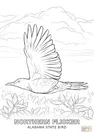 Click The Alabama State Bird Coloring Pages