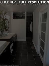 Small Narrow Bathroom Design Ideas by Empty Apartment Bathroom Design Home Design Ideas