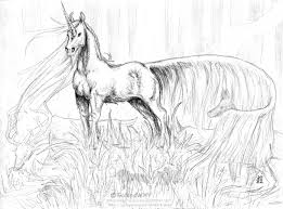 Realistic Winged Unicorn Coloring Pages 9 B