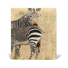 LA77 And Zebra Printed Scarf Adult Unisex Products Pinterest