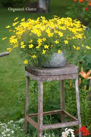 Organized Clutter Junk Garden Tour Best Ideas On Pinterest Ladder Primitive Ebebdfcabe Rustic Decor Gardens
