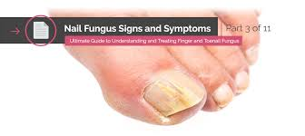 Infected Fingernail Bed by The Ultimate Guide To Understanding And Treating Finger And