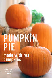 Pumpkin Puree Vs Easy Pumpkin Pie Mix by Pumpkin Pie Made With Real Pumpkins Works With Squash Too The Art