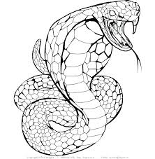 Snake Coloring Pages Color Page Sheets Of Snakes Evil Fairy Adults