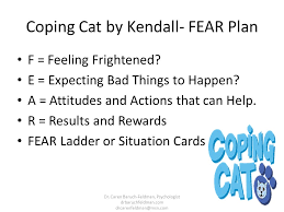 coping cat cognitive behavioral strategies for treating stress and worry in