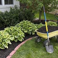 Strikingly Garden Mulch Home Depot Landscaping The Home Designs