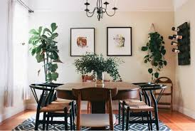 View In Gallery Dining Room With Plants And A Patterned Rug