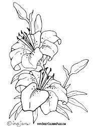 Full Image For Coloring Pages Of Flowers Adults Printable Birds And