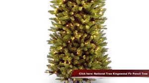 Dunhill Fir Christmas Trees by Check Out National Tree 7 1 2 U0027 Kingswood Fir Pencil Tree Youtube