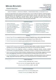 Sample Ceo Resume Templates Professional Template Summary Format