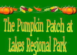 Tallahassee Pumpkin Patch by Find Pumpkin Patches In Florida Pick Your Own Pumpkins