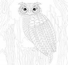 Peter Pauper Press Intricate Owl Town Coloring Book