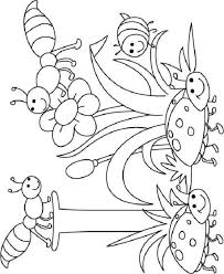 Coloring Pages With Bugs