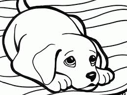 Detail Of Baby Dog Coloring Pages