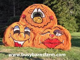 Pumpkin Patch Houston Oil Ranch by Busy Barns Farm Spider Round Bale Art Round Bale Art Pinterest