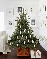 Glamorous Balsam Hill Artificial Trees With Spruce Christmas And Rustic Tree