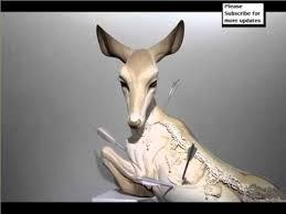 Colorful Easy Ceramic Animal Sculptures